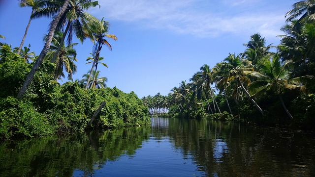 Kerala Tour Packages For Couple.