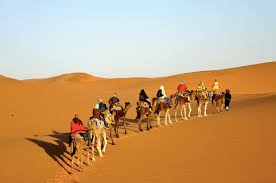 7 Days: Imperial Cities And Sahara Desert Trip