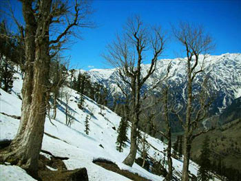 Wonders Of Himachal