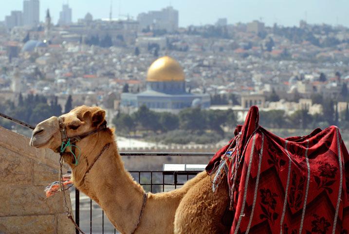 Amman & Jerusalem Stopover Tour
