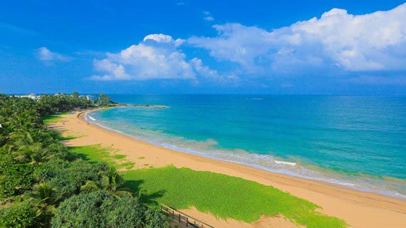 Romantic Gateway - Sri Lanka Tour