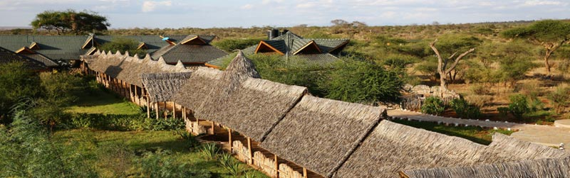 3 Days Amboseli Lodge Safari Tour
