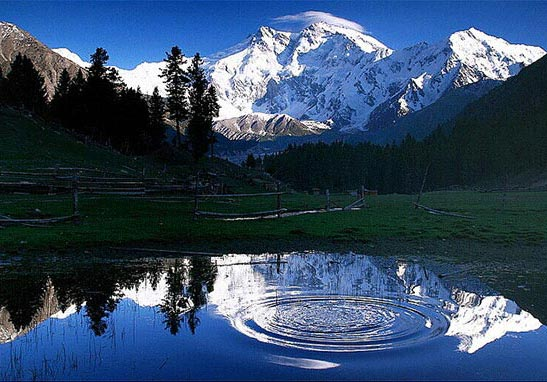 Fairy Meadows, Nanga Parbat Base Camp Trek Tour