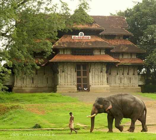 Kerala Village Experience Tour