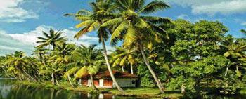Homestays In Offbeat Kerala