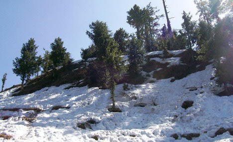 Dalhousie To Pathankot Tour Package
