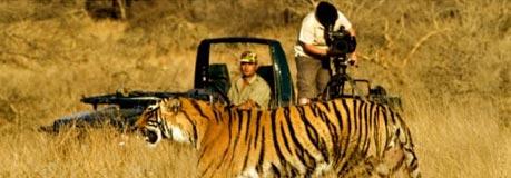 6 Days Wildlife Tiger Tour