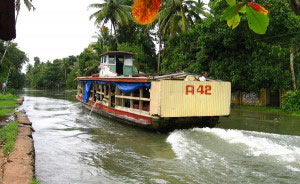 Backwater Magic - Kumarakom Tour