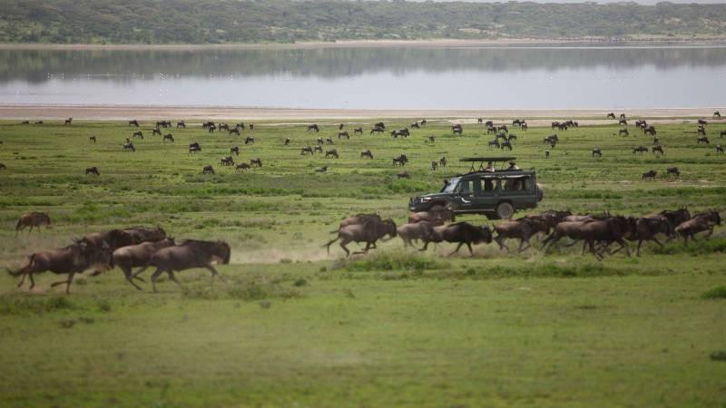 Maji Safi Safaris Tour