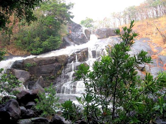 God'S Own Kerala Tour