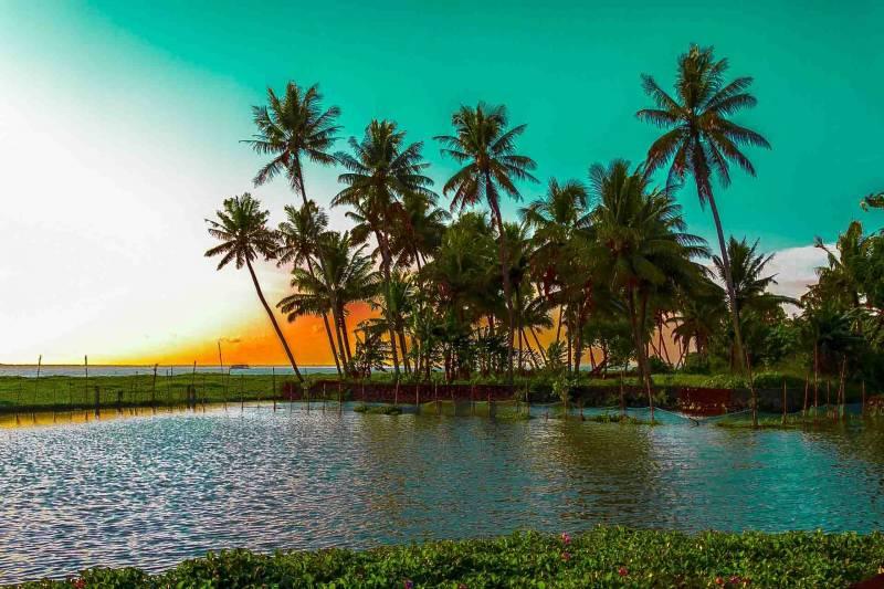 Cochin-Guruvayoor-Wayanad-Munnar-Thekkady-Kumarakam-Kovalam-Kanyakumari Tour