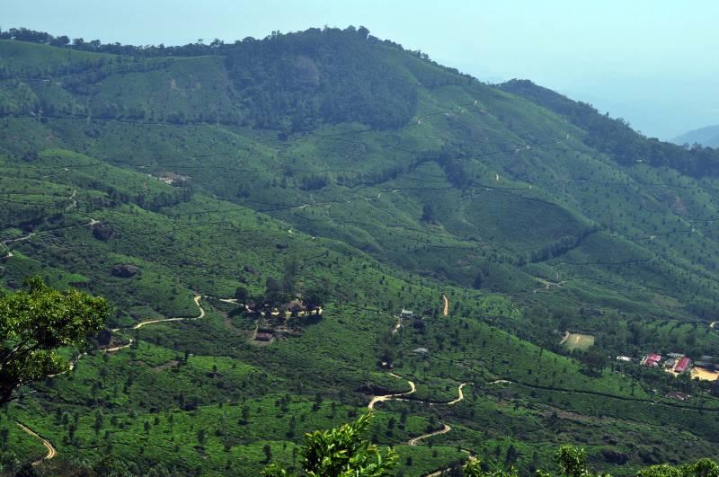 Cochin-Guruvayoor-Wayanad-Munnar-Thekkady-Kumarakam-Kovalam-Kanyakumari Package