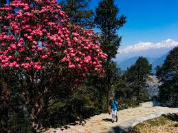 On Shiva's Trail 6 Nights / 7 Day Tour