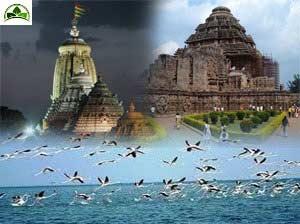 Golden Triangle Of Orissa Tour With Bhubaneswar Konark - Puri