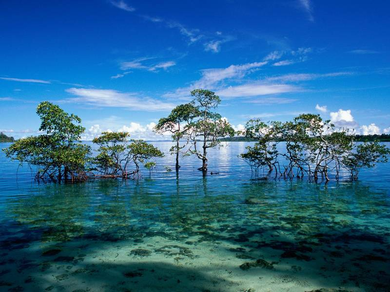 9 Days Andaman Holiday Package