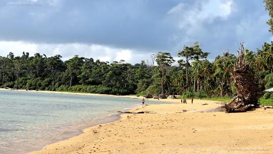 Port Blair 4 Days Tour