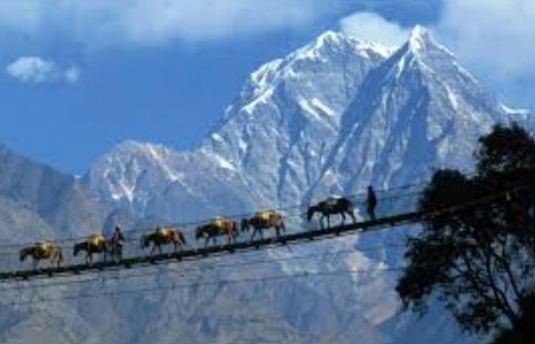 Gangtok Pelling Darjeeling Tour Package