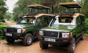 Best Of East Africa Wildlife Safari