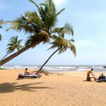 7 Days Tour Package In Sri Lanka