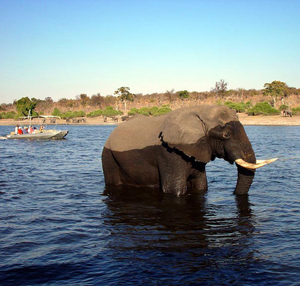 Two Days And One Night Tour - Victoria Falls Only