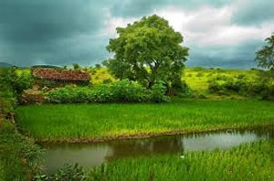 Konkan Costal Tour