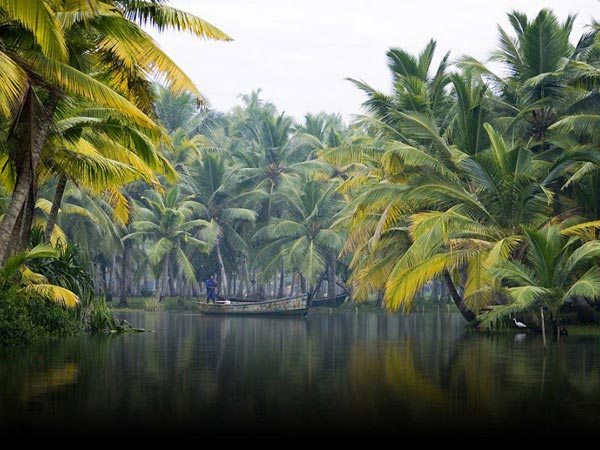 Kerala Backwaters And Beaches Package