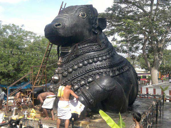 South India Beyond Backwaters Package