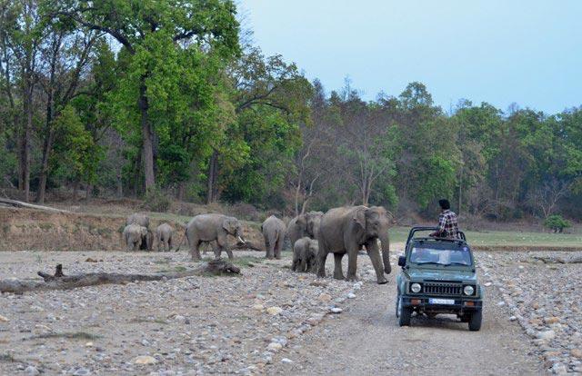 Dehradun Mussoorie Tour