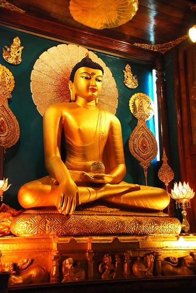 Discover Buddha Tour