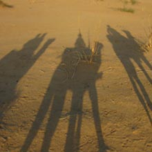 Four Days And Three Nights Safari Package