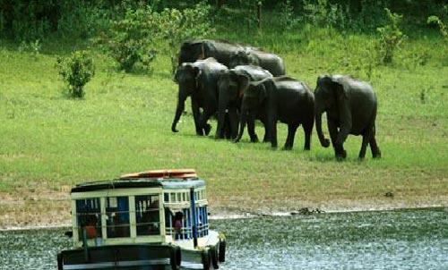 Evergreen Kerala Tour