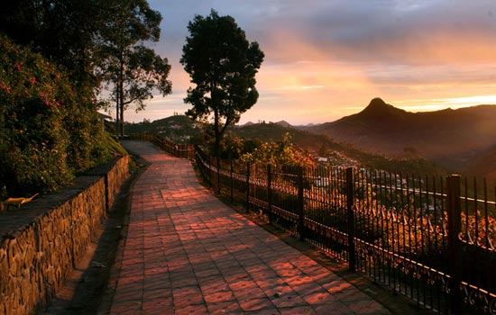 Gts Honeymoon Special - South India - Tour