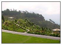 Lava - Lolegaon - Kalimpong Tour