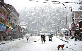 Shimla Manali - Honeymoon Paradise