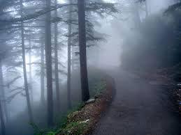 Chandigarh - Shimla - Manali - Chandigarh Honeymoon Package (4N5D)