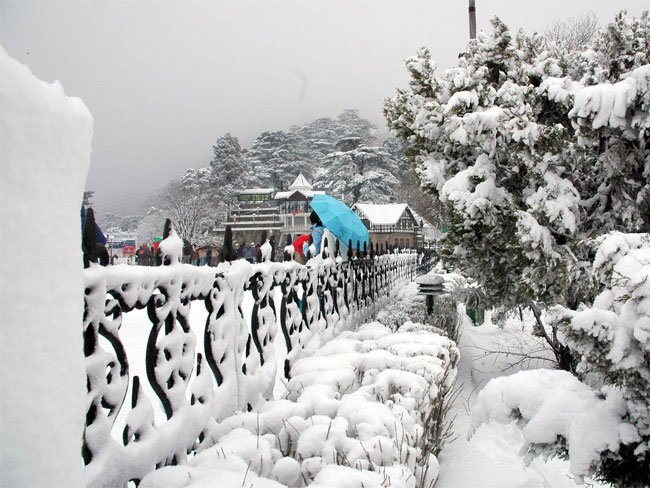 Honeymoon In Shimla Tour