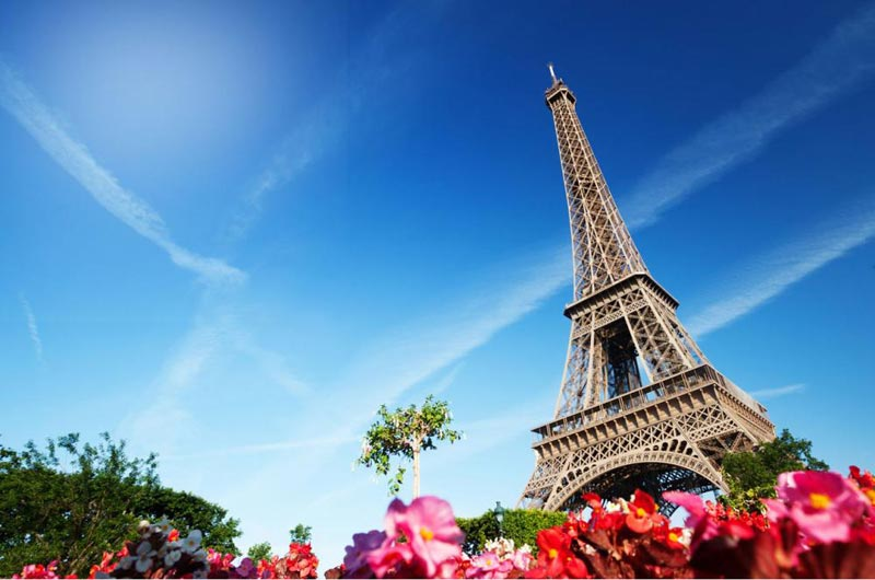 Discover Provence (4730) Tour