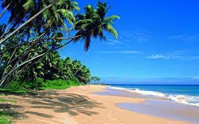 Srilankan Gateaway Tour