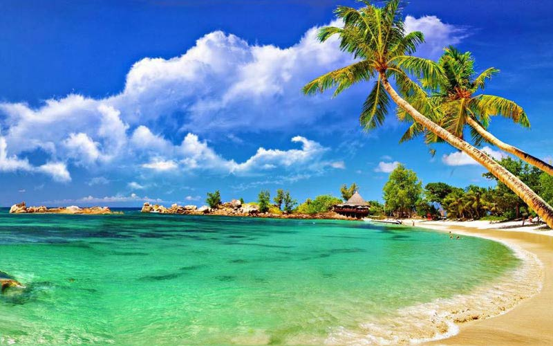 Discover Andaman With Neil Island Tour
