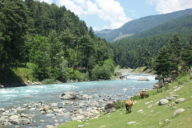 Special Kashmir Holiday Package