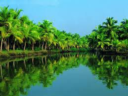 Romance In Kerala Tour