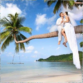 Pattaya Bangkok Honeymoon Tour