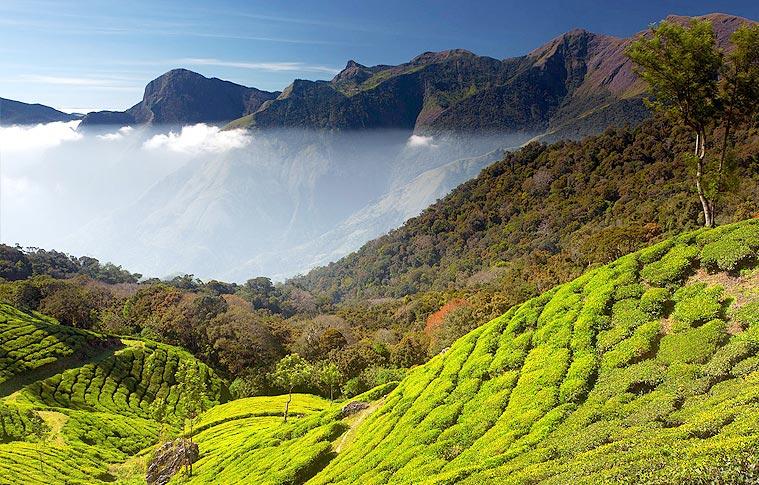 Wonderful Kerala Honeymoon Tour Package