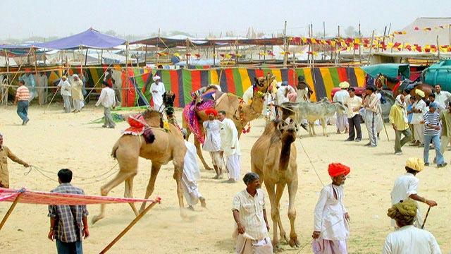 Nagaur Festival Tour