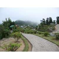 Sikkim - Kalimpong & Darjeeling Tour
