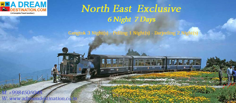 North East Exclusive