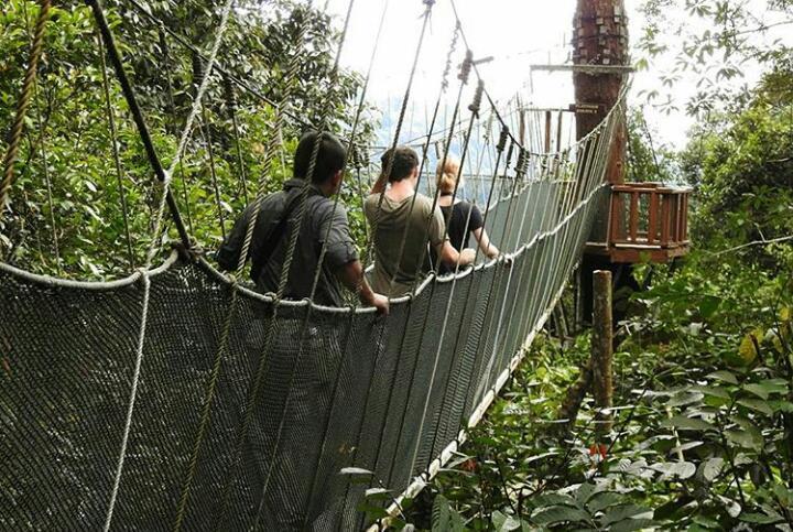 Kinabalu Nasional Park/island Hopping/kota Kinabalu City Tour