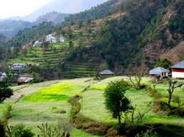 Affordable Himachal Tour