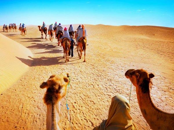 Taj With Desert Safari Package