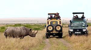 7 Days Mid Range Safaris, Maasai Mara,  Amboseli, Lk. Naivasha(Great Rivt Valley)